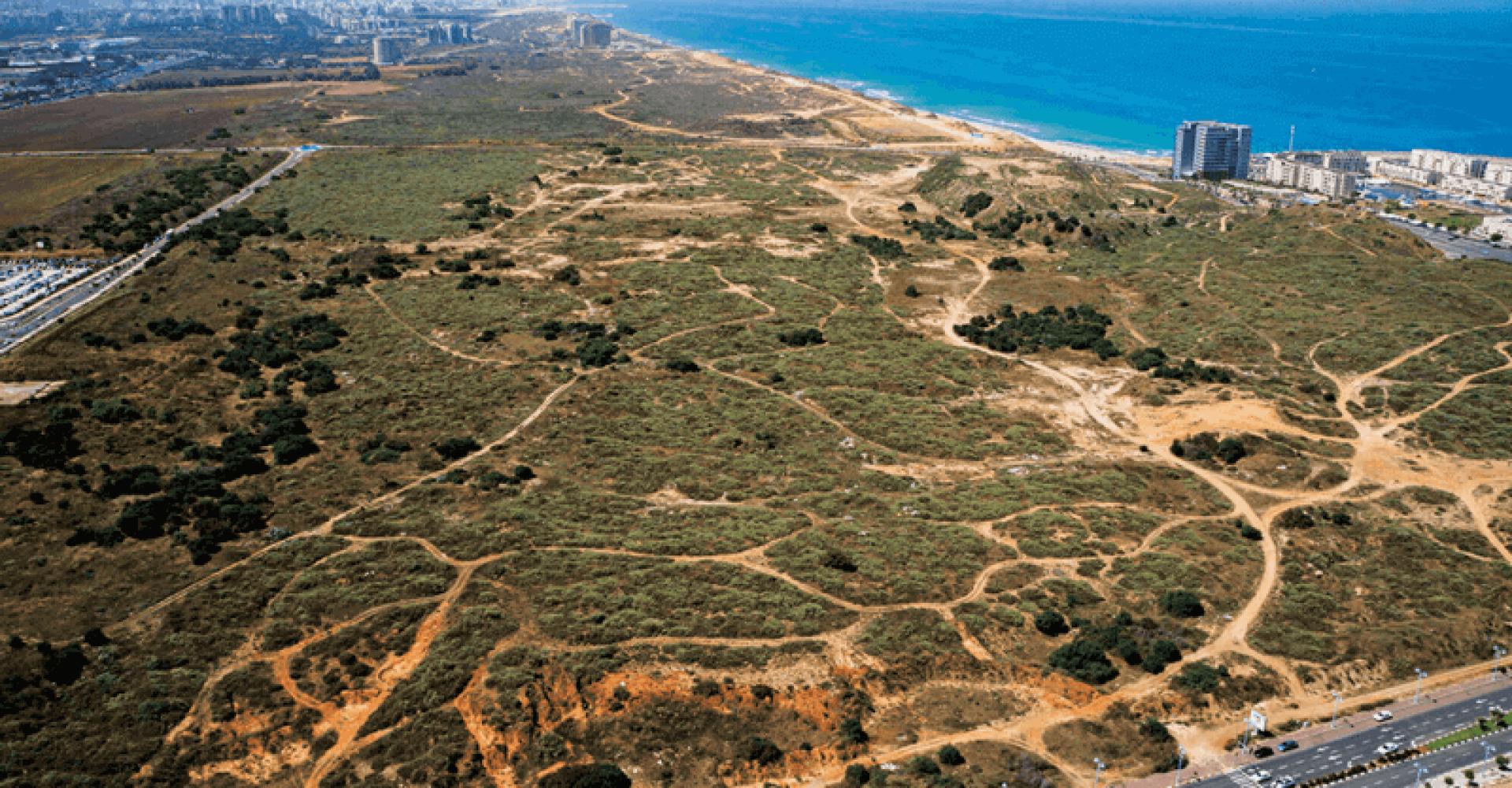חוף התכלת הרצליה פיתוח